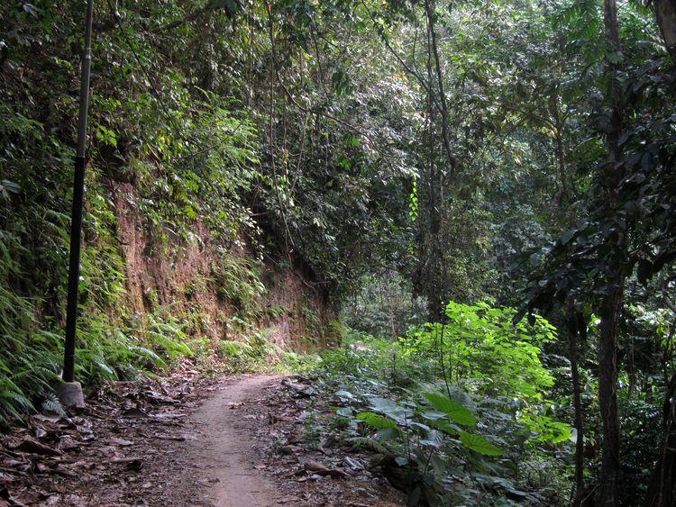 Qué ver en Nusa Penida