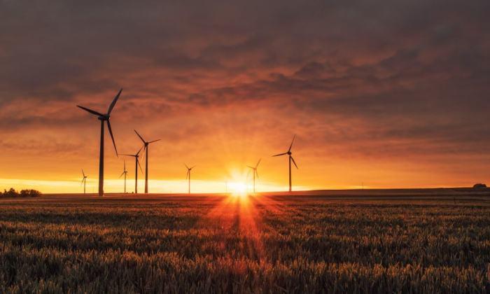 Alemania impulsa las energías renovables