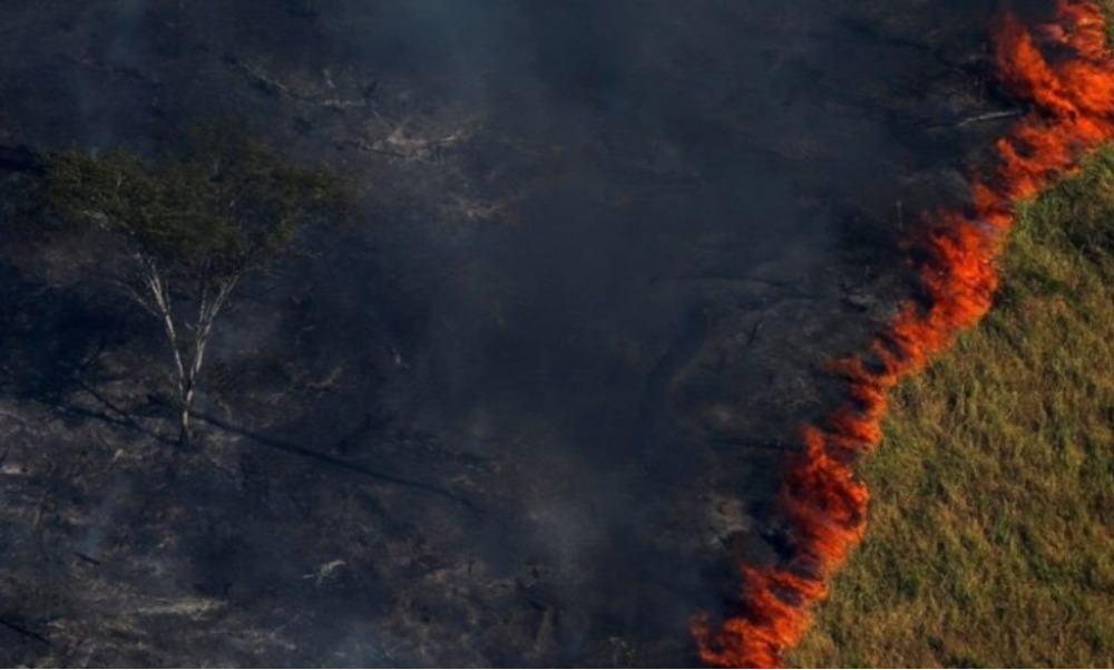 Amazonas, Amazonías, incendio forestal