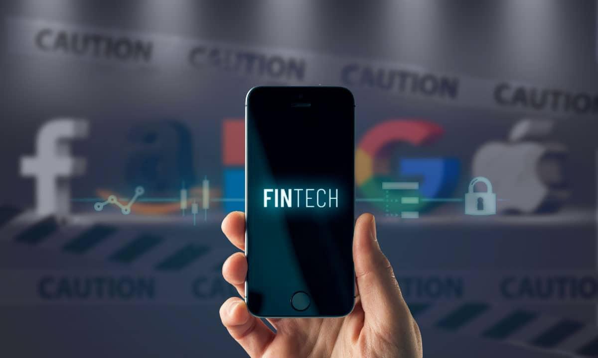 fintech Big Tech