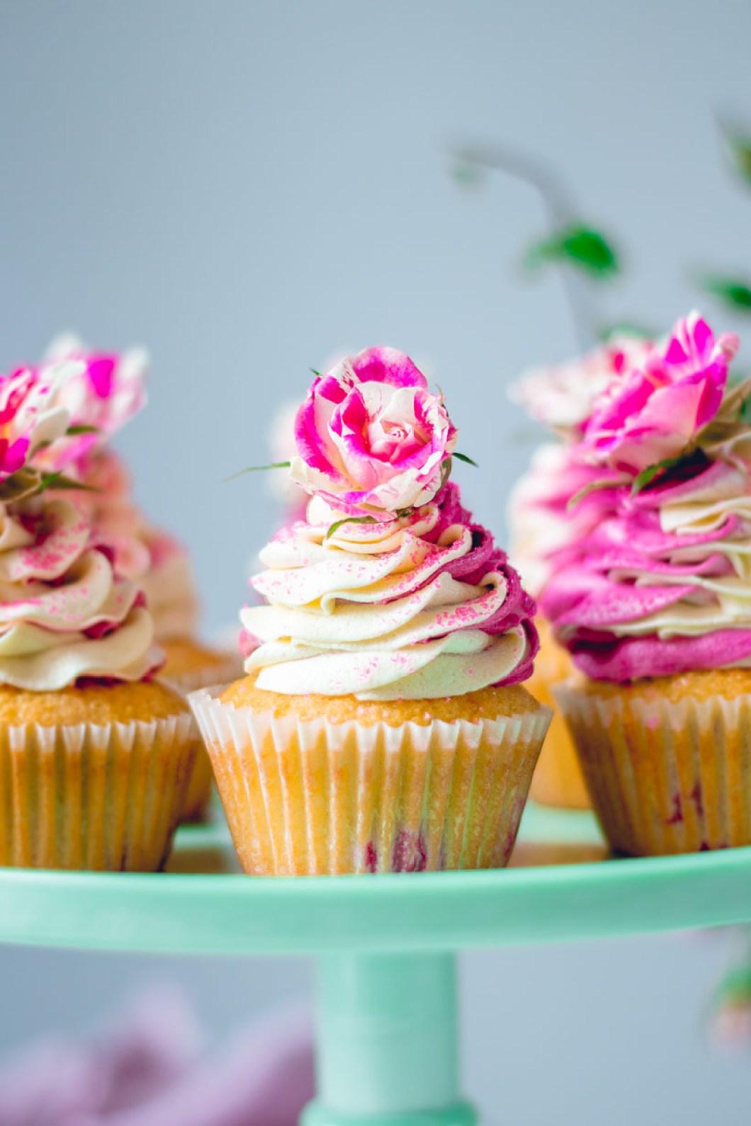 cupcakes_blackberry-8825