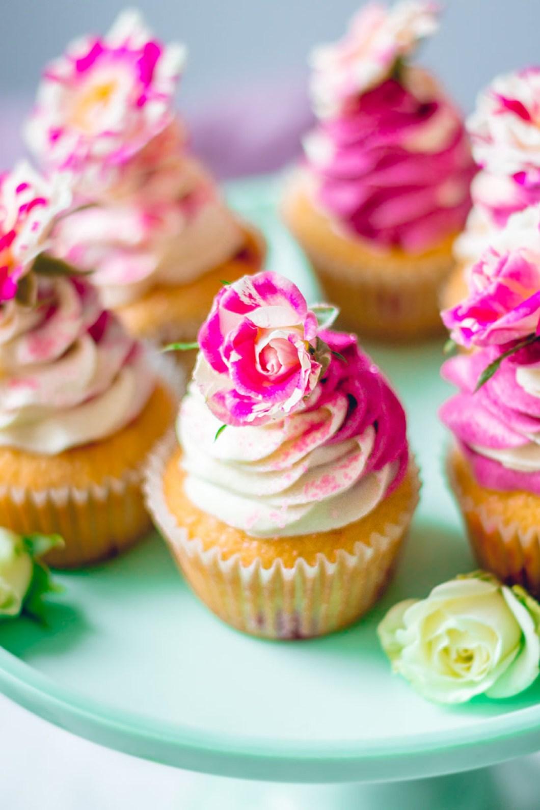 cupcakes_blackberry-8848