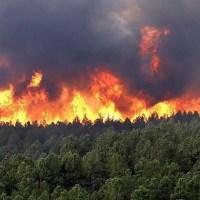 El fuego continúa azotando distintas localidades de Misiones