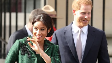 Photo of El príncipe Harry y Meghan Markle siguen 17 nuevas organizaciones sociales en Instagram