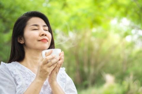té y mindfulness