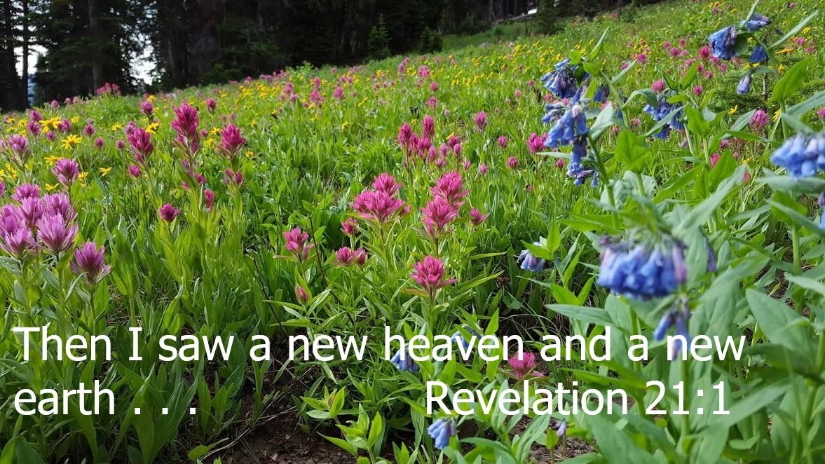 Rev 21 1