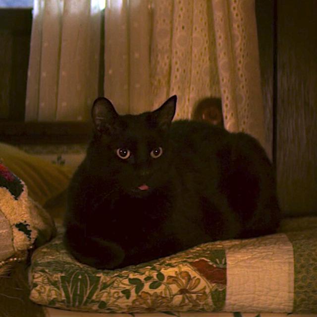 The new Salem was heavily criticized (Photo: Netflix)