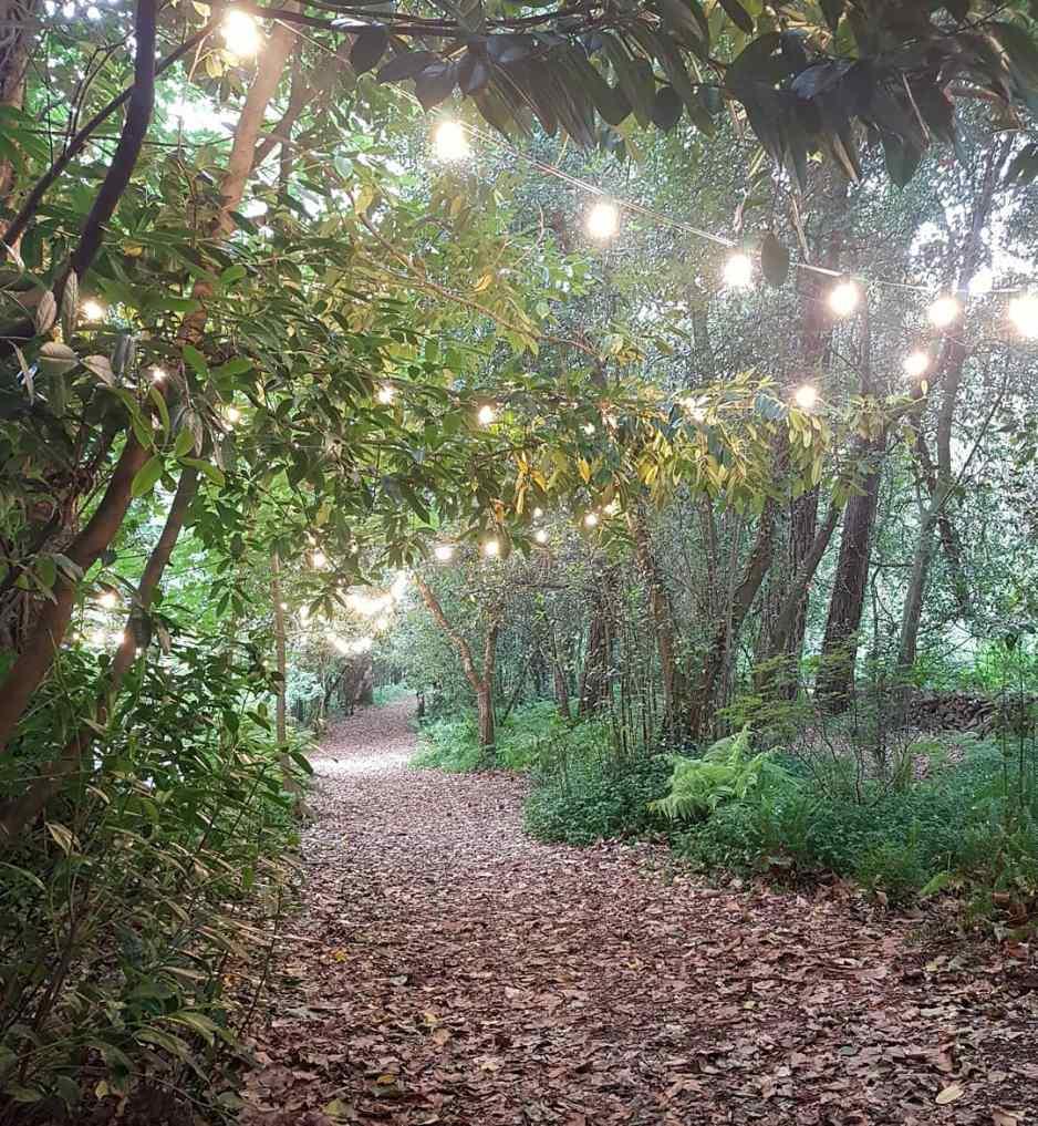 Bosque mágico Pazo de Sergude