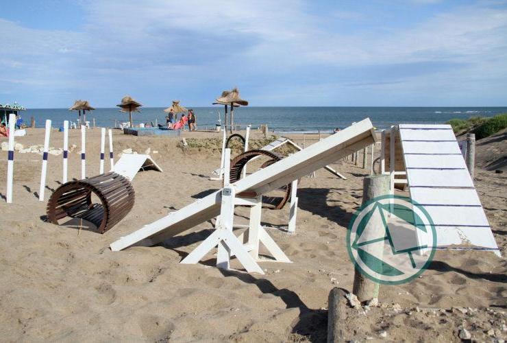 Mar del Plata cuenta con playa exclusiva para mascotas05