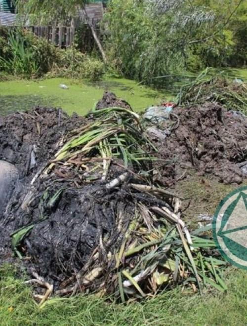Limpieza de arroyos y zanjones en el barrio El Molino de Ensenada 3