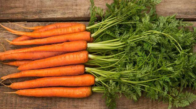 Resultado de imagen para zanahoria