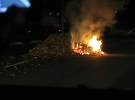 Abandoned pile of leaves we found burning in the middle of the road...