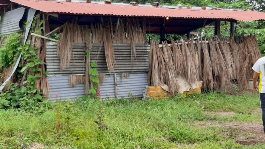 Casa de Ana, desnutrición
