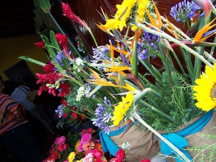 Galipán: montaña, flores y excelente gastronomía