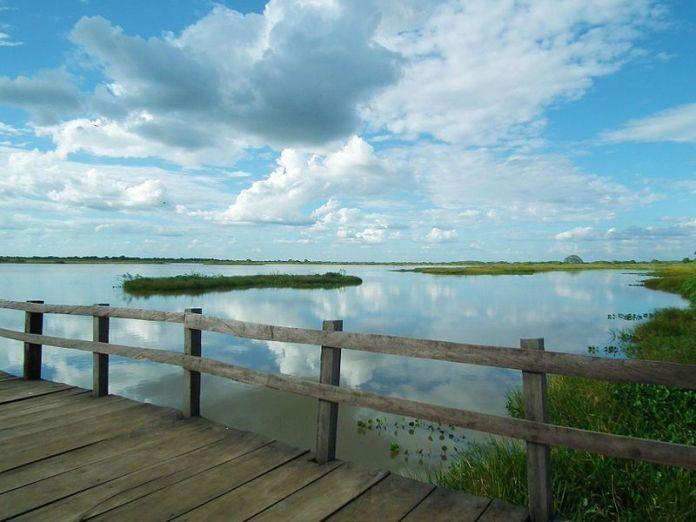 Vista de los Esteros de Camaguán