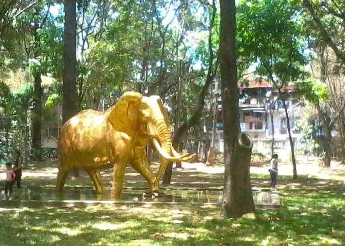 Elefante de oro