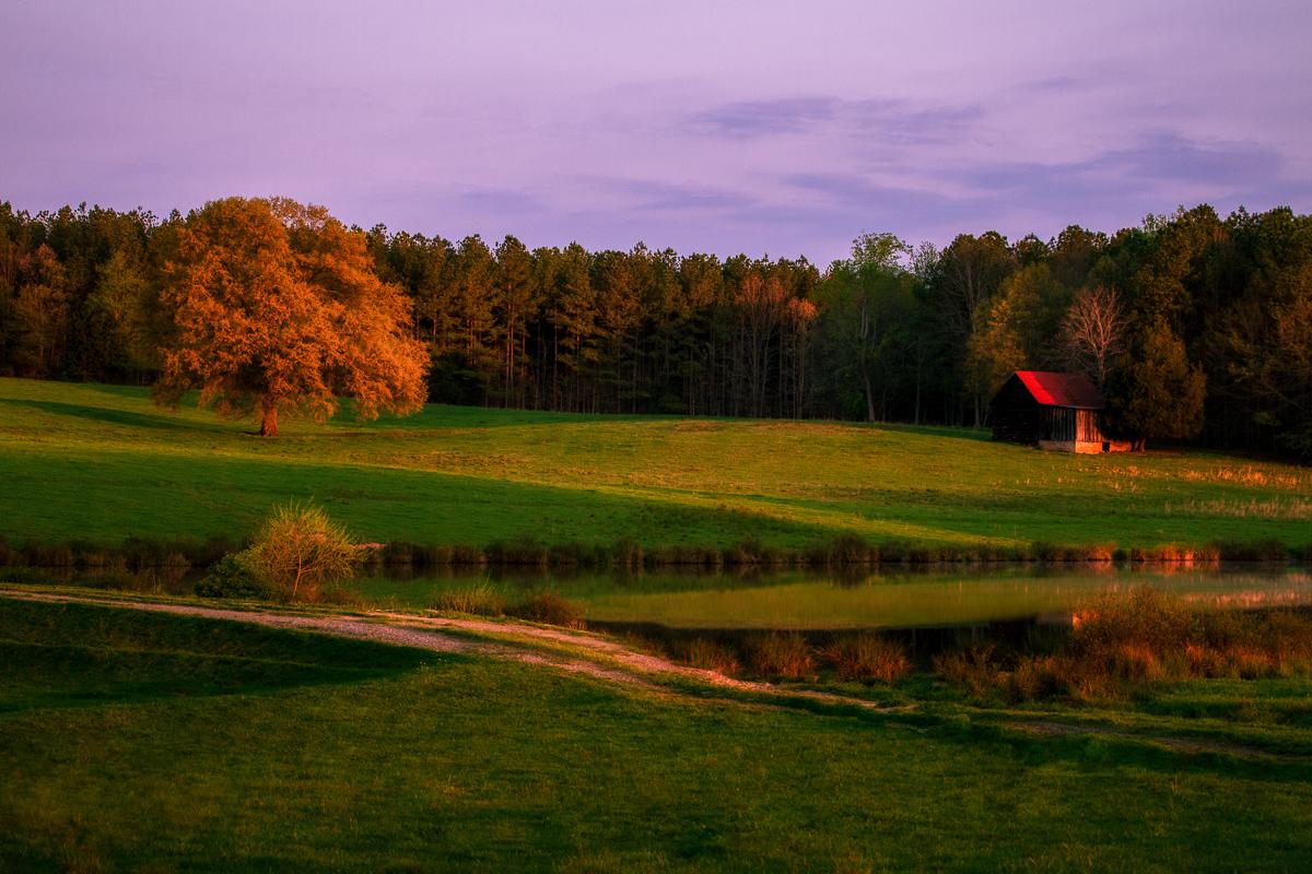 Morning Glory - Barn - Photo