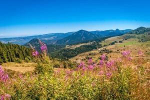location saisonnière en Auvergne