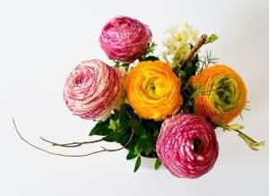 signification des couleurs de roses