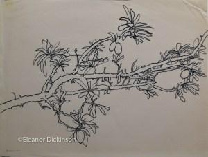 1972.tree.branch.1