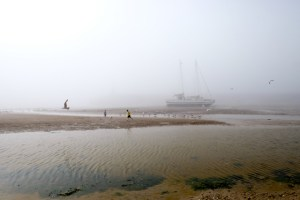 Playing in the Mist