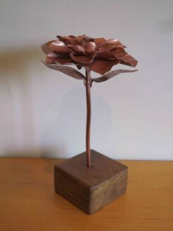 camellia copper flower from side