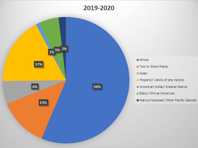 Pie chart of 2019-2020 demographics of the Puyallup School District. White students are 56%, Two or More Races are 13%, Asian 6%, Hispanic/Latino are 17%, American Indian/Alaskan Native 1%, Black/African American 5%, and Native Hawaiian/Pacific Islander 2%.