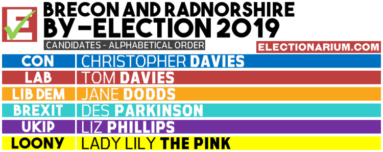 Brecon and Radnorshire Byelection 2019 candidates