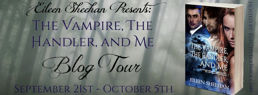 The Vampire, The Handler, And Me Tour Banner