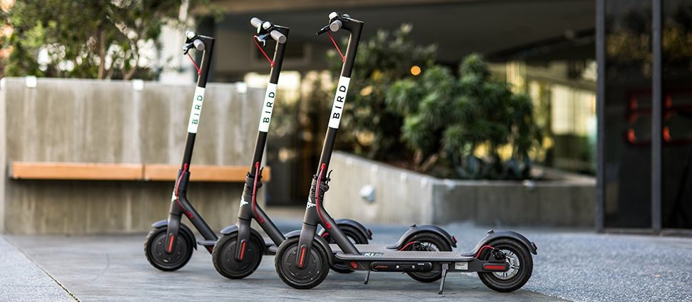 Image result for All you need to know about Electric Scooters