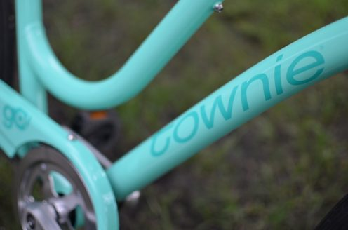 electra_townie_go_7d_14