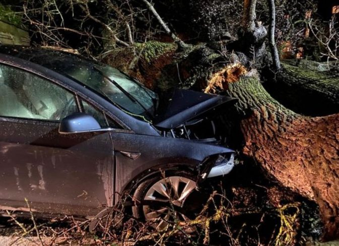 Tesla Model X tree accident 1
