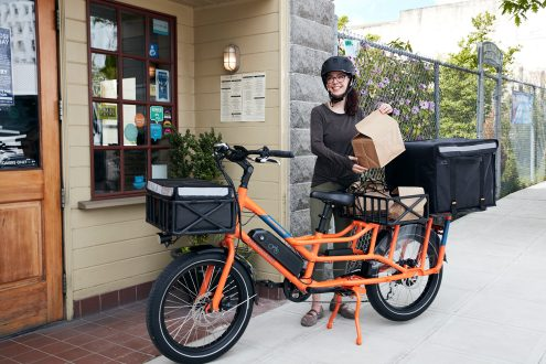 radwagon 4 electric cargo bike