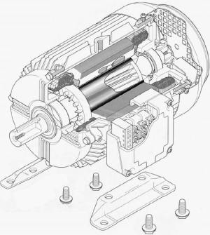 The Cage Induction Motor Explained In Details