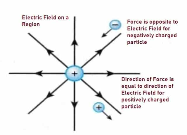 Representation of Electric Field and Force Vectors