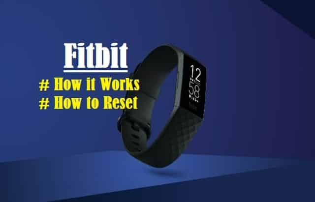 Introduction to Fitbit