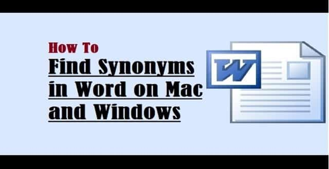 Intro to Synonym on Mac and Windows