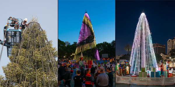 IBEW Local 332 and Santa Clara Valley NECA Donate LED Lights to Christmas in the Park