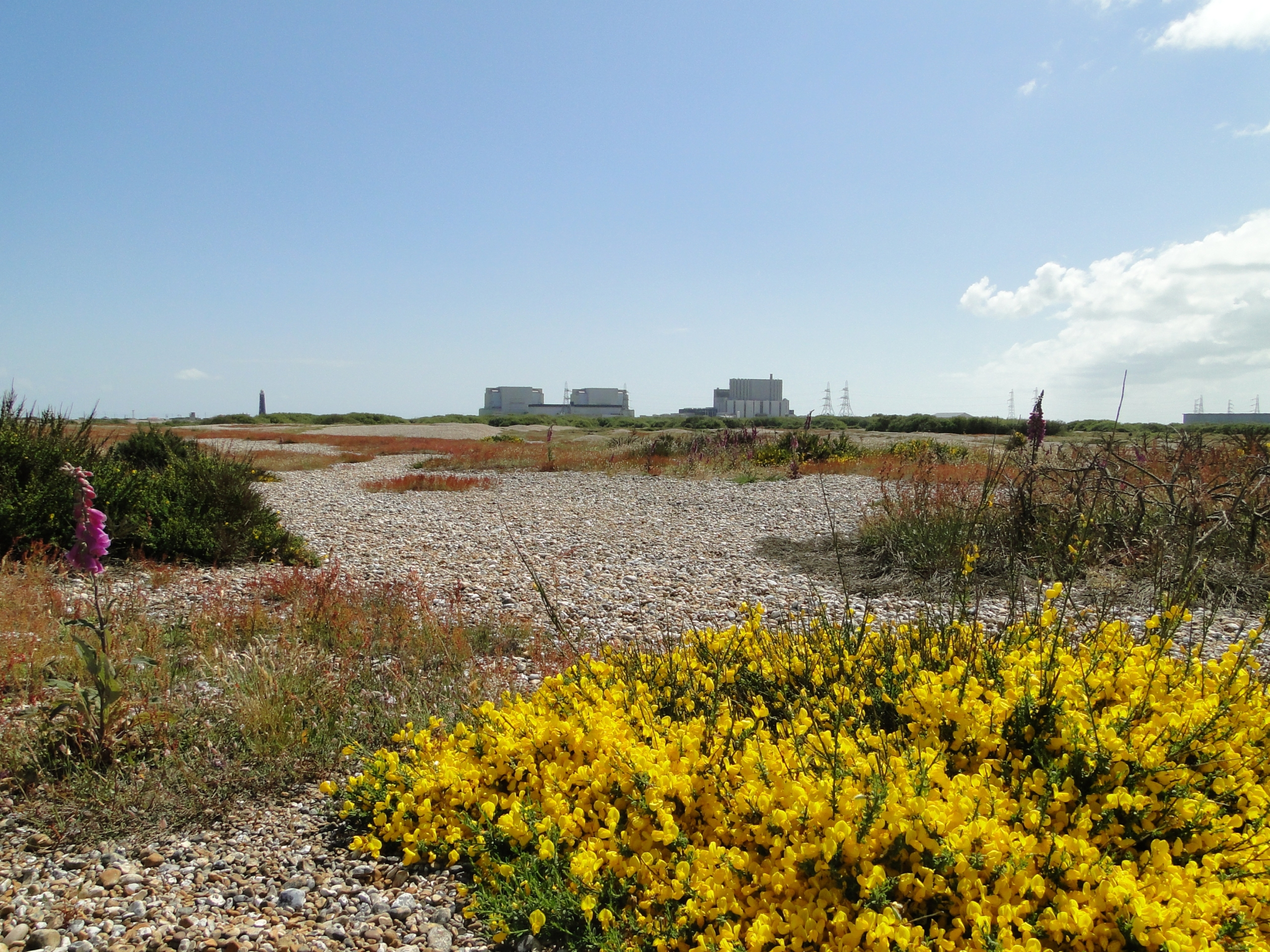Dungeness B nuclear power station in Kent