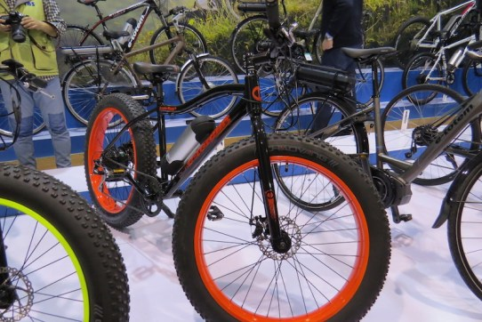 golden wheel fat electric bike