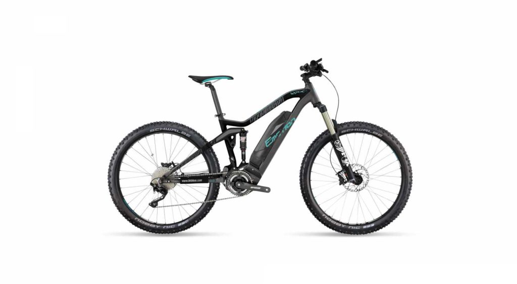 Easy Motion Rebel Lynx electric bike