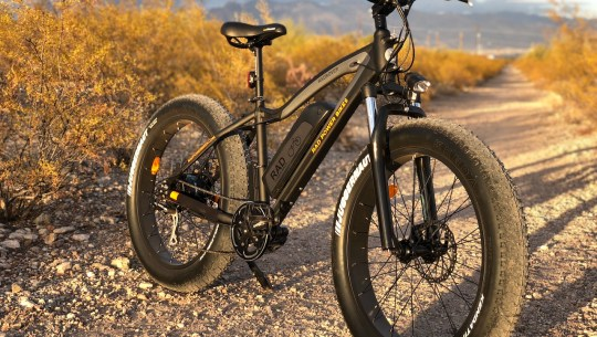 Rad Power RadRover Electric Fat Bike Review Part 1 – Pictures & Specs