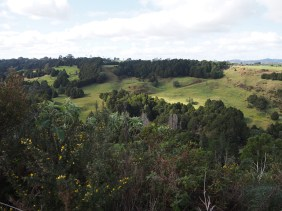 Before dropping into the valley after Okaihau