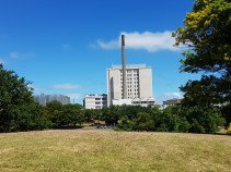 Looking across the Doman to Auckland Hospital