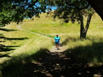 Coming back down from Mt Eden