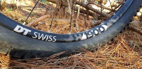 DT Swiss wheels are tough and tubeless ready