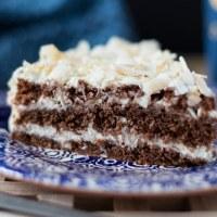 Dark chocolate cake with coconut cream