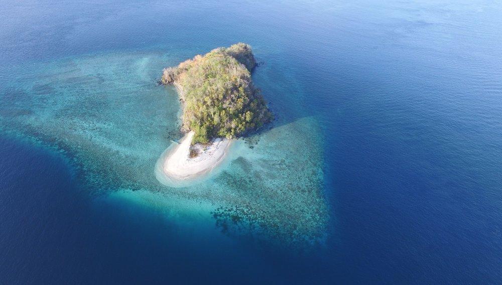 MahaRaja EcoDive in Indonesia