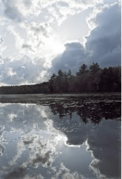 Walden Pond Photographed by Robert Sargent Fay