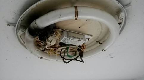 Emergency electrician replace a Wire Electrical fault due to degraded wire insulation.